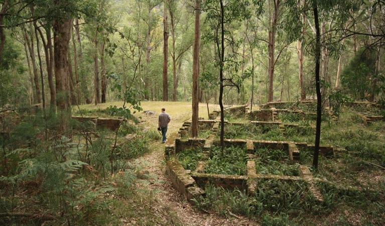 Man walking in Newnes Industrial Ruins, Wollemi National Park. Photo: Elinor Sheargold