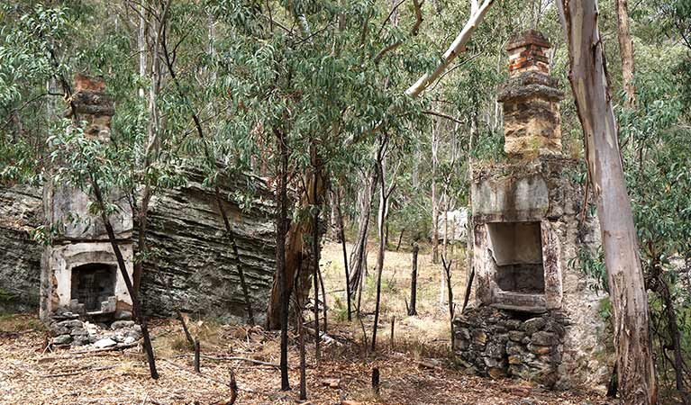 Brick chimney remnants amongst forest, Newnes ruins walk, Wollemi National Park. Photo: Steve Alton.