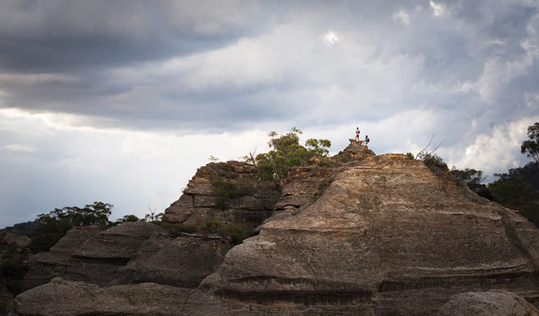 People standing at the top of Pagoda Lookout, Wollemi National Park. Photo: Michael Sharp/OEH