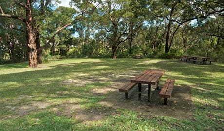 Girawheen picnic area, Wolli Creek Regional Park. Photo: John Spencer