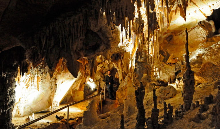 Wollondilly Cave. Photo: Kevin McGrath.