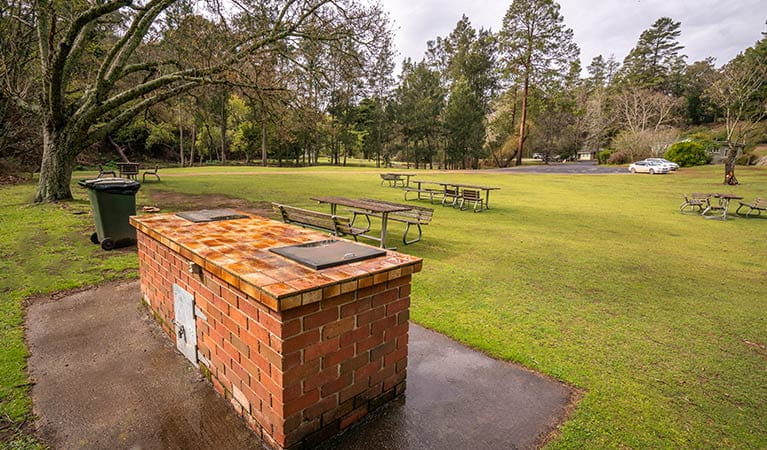 Barbecue and picnic tables at Wombeyan Caves campground. Photo: OEH/John Spencer