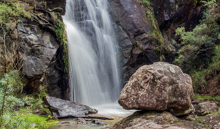 Wombeyan Waterfall walking track, Wombeyan Karst Conservation Reserve. Photo: Steve Babka