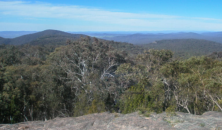 Norths lookout, Woomargama National Park. Photo: Dave Pearce