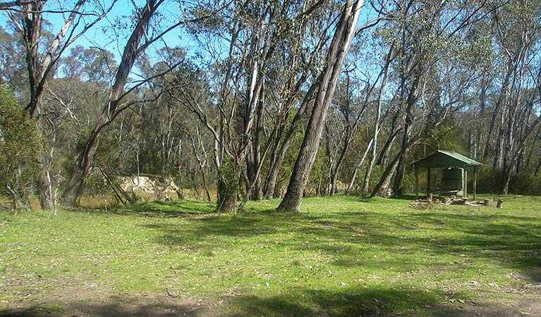 Tin Mines campground, Woomargama National Park. Photo: Dave Pearce