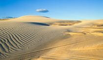 Shadows on the sand dunes. Worimi Conservation Lands. Copyright:NSW Government