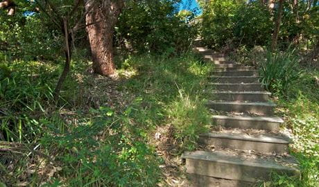 Stairs on The Coast walking track. Photo: John Spencer