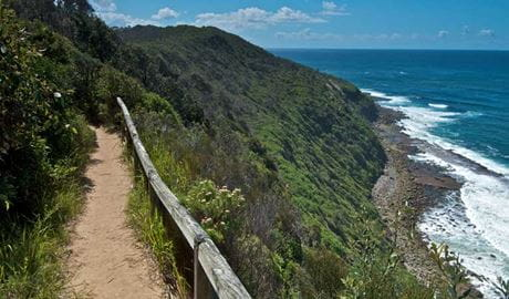Coastal walking trail, Wyrrabalong National Park. Photo: John Spencer