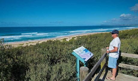 Man at Pelican Beach lookout. Photo: John Spencer