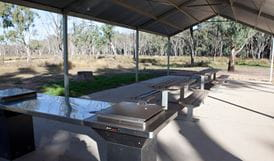 Barbeques in Yanga Woolshed picnic area. Photo: David Finnegan.
