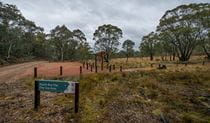 Apple Box Picnic Area, Yanununbeyan State Conservation. Photo: John Spencer/NSW Government