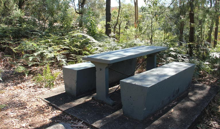 Yellow Rock lookout picnic area, Yellomundee Regional Park. Photo: John Yurasek