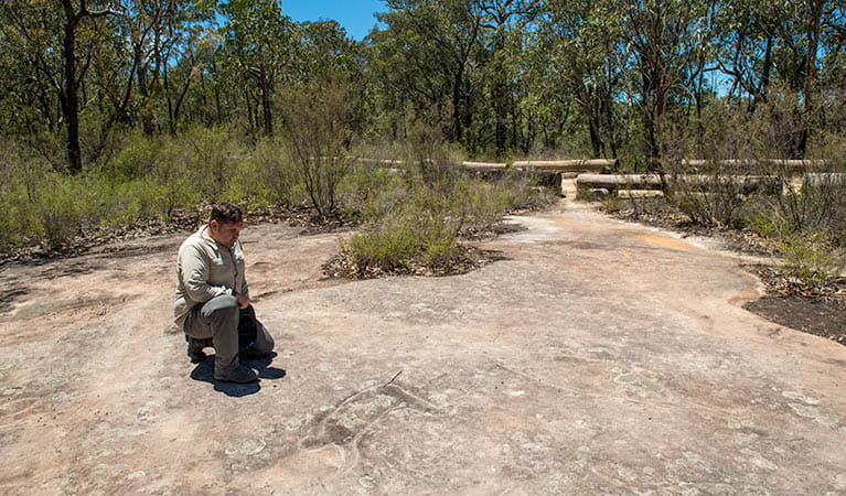 Finchley Cultural Walk, Yengo National Park. Photo: John Spencer