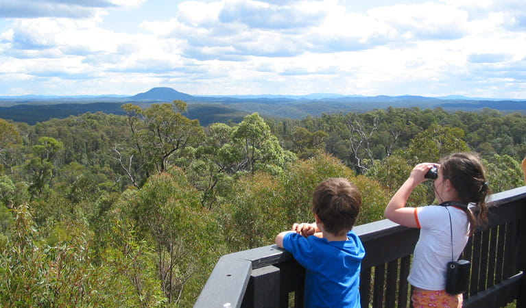 Finchley Lookout, Yengo National Park. Photo: Susan Davis