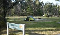 A sign at Mogo campground with campsites and picnic shelter in the background. Photo: Sarah Brookes © DPIE