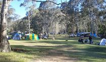 Private Town campground, Yerranderie Regional Park. Photo: D Egan/NSW Government