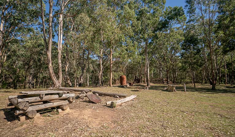 A fire pit surrounded by bushland at Private Town campground in Yerranderie Regional Park. Photo: John Spencer/OEH