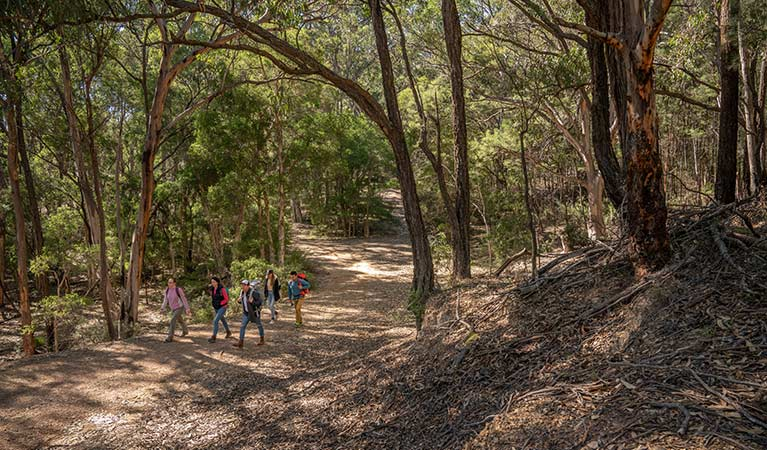 A group of friends walking along Silver Peak Mine track in Yerranderie Regional Park. Photo: John Spencer/OEH