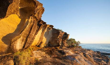 Angourie to Brooms Head, Yuraygir National Park. Photo: Rob Cleary