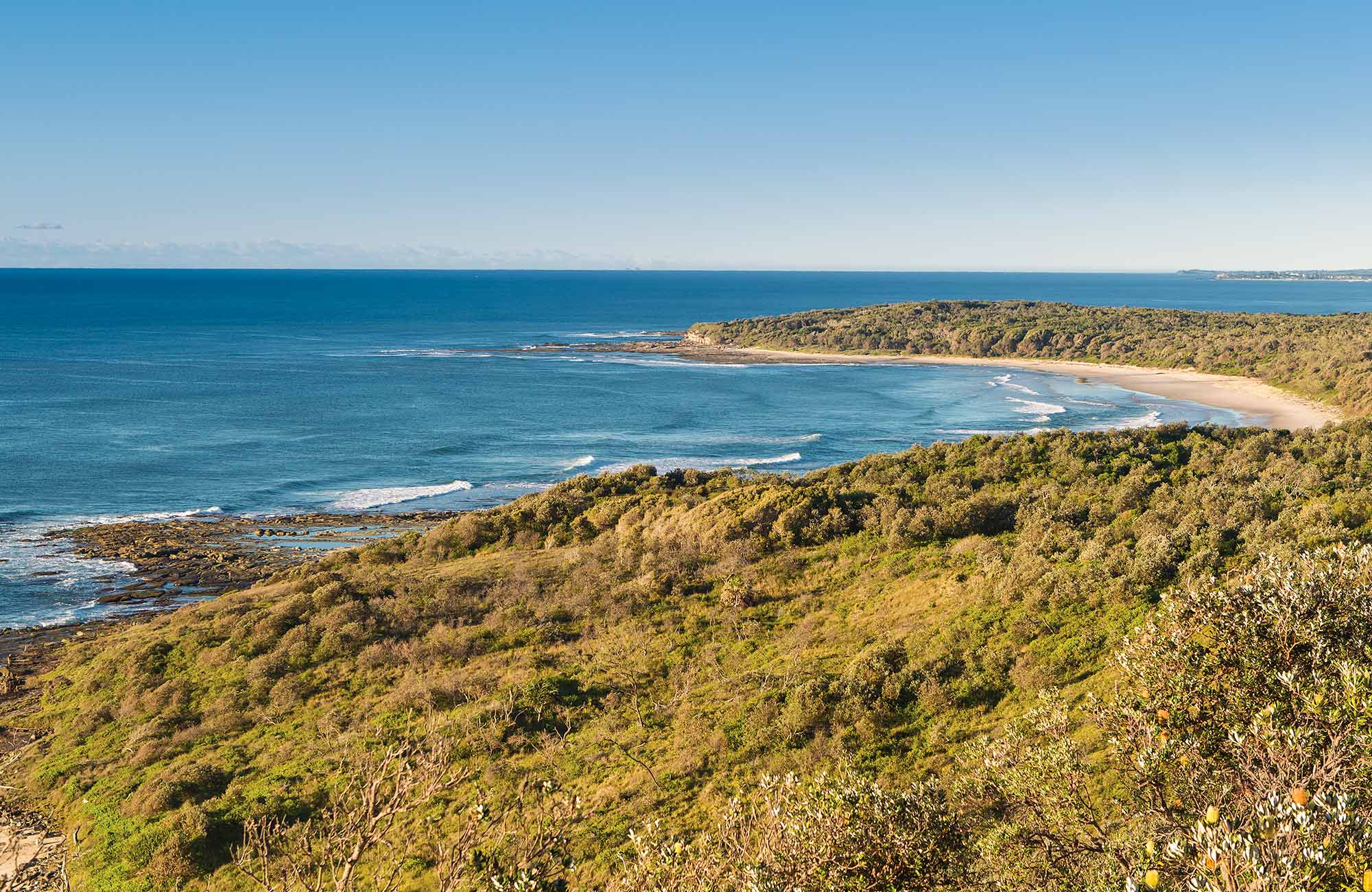 Angourie walking track, Yuraygir National Park. Photo: Rob Cleary