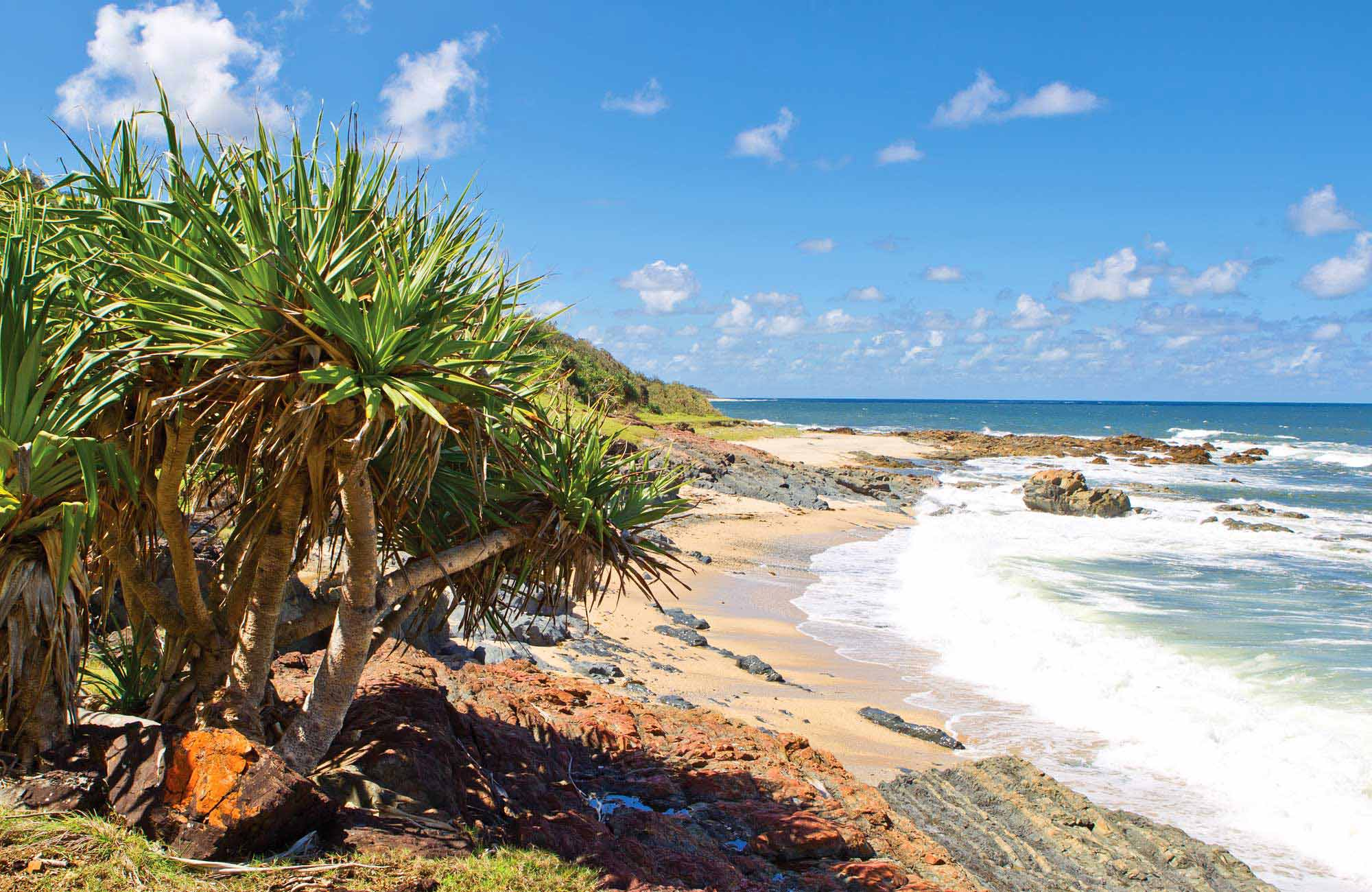 Pebbly Beach, Yuraygir National Park. Photo: Rob Cleary