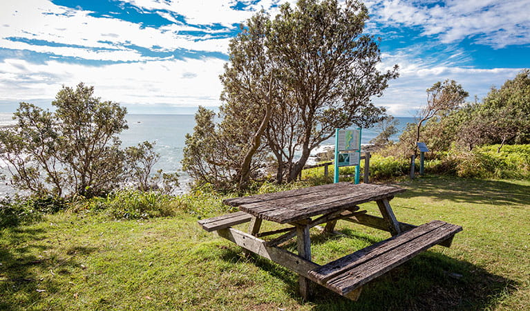 Barbecue facilities at Boorkoom campground in Yuraygir National Park. Photo: Robert Cleary/DPIE