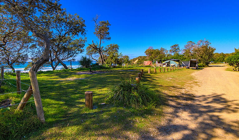 Picnic facilities at Illaroo campground. Photo: Rob Cleary