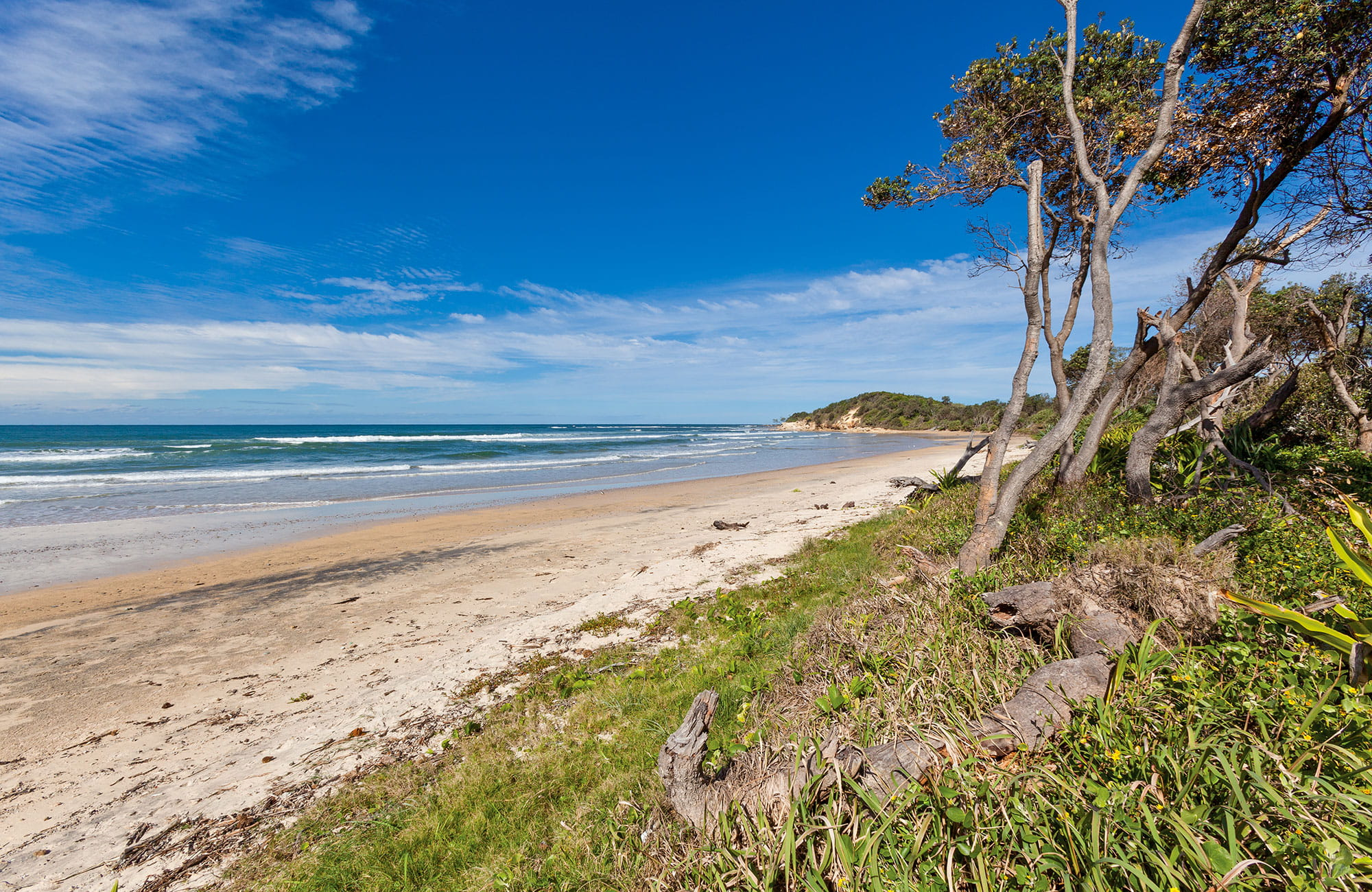 The beach at Illaroo north campground in Yuraygir National Park. Photo: Robert Cleary/DPIE