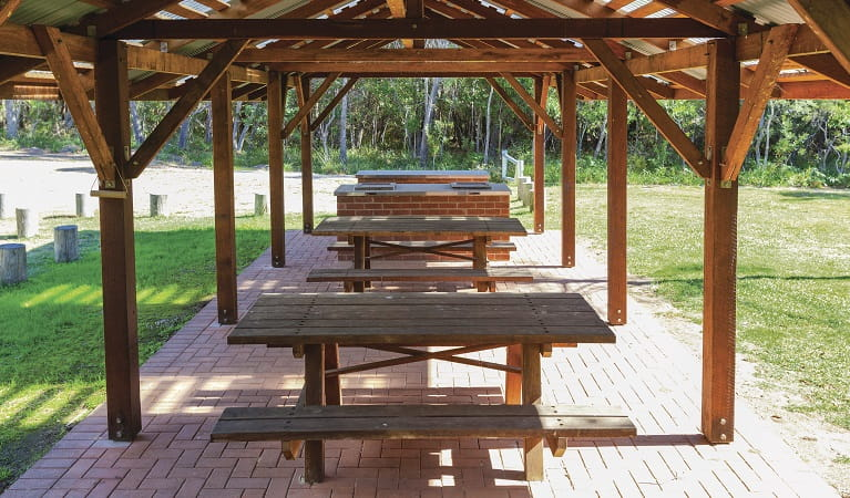 Picnic tables, Illaroo Group camping area, Yuraygir National Park. Photo: R Cleary Seen Australia/OEH