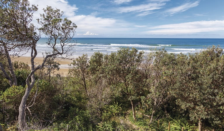 The beach at Illaroo group camping area, Yuraygir National Park. Photo: R Cleary Seen Australia/OEH