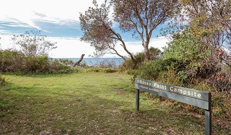 Rocky Point campground, Yuraygir National Park. Photo: Rob Cleary/DPIE