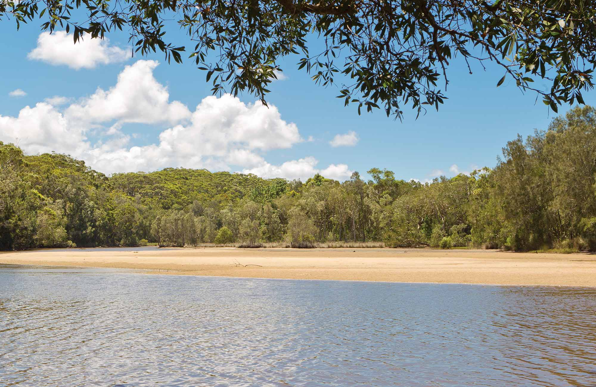 Station Creek campground, Yuraygir National Park. Photo: Rob Cleary