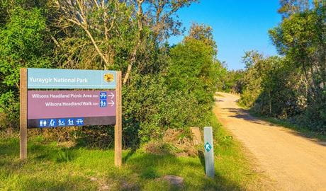 Wilsons Headland picnic area, Yuraygir National Park. Photo: Rob Cleary / Seen Australia