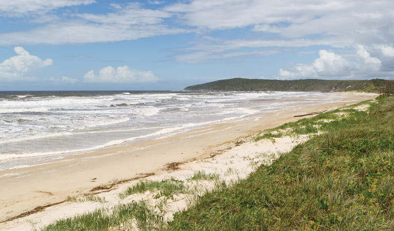 Beach views from the Yuraygir Coastal walk. Photo: Rob Cleary