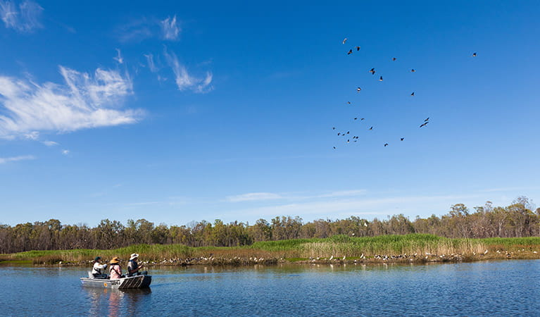 Murray Riverina bird watching. Photo: David Finnegan oeh.jpg
