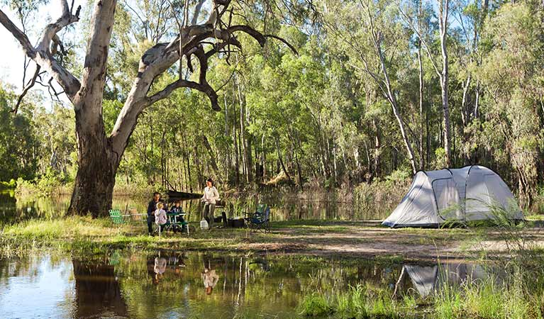 Camping by the Murray River inMurray Valley National Park. Photo: David Finnegan/OEH