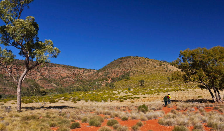 Mulgowan walk, Gundabooka National Park. Photo: David Finnegan