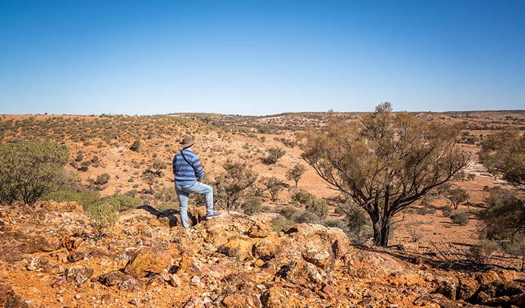 A man stands at The Gorge lookout in Sturt National Park. Photo: John Spencer © DPIE