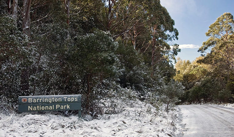 Snow-covered park entry in Barrington Tops National Park. Photo: Shane Ruming/DPIE