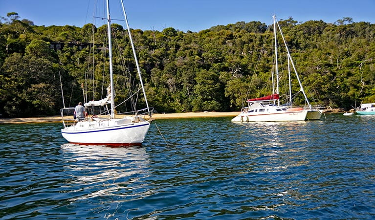 Boats moored near Store Beach in Sydney Harbour National Park. Photo: Kevin McGrath/DPIE