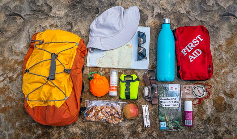 Flat lay of some basic items to pack in your backpack on a bushwalk. Photo: John Spencer/DPIE
