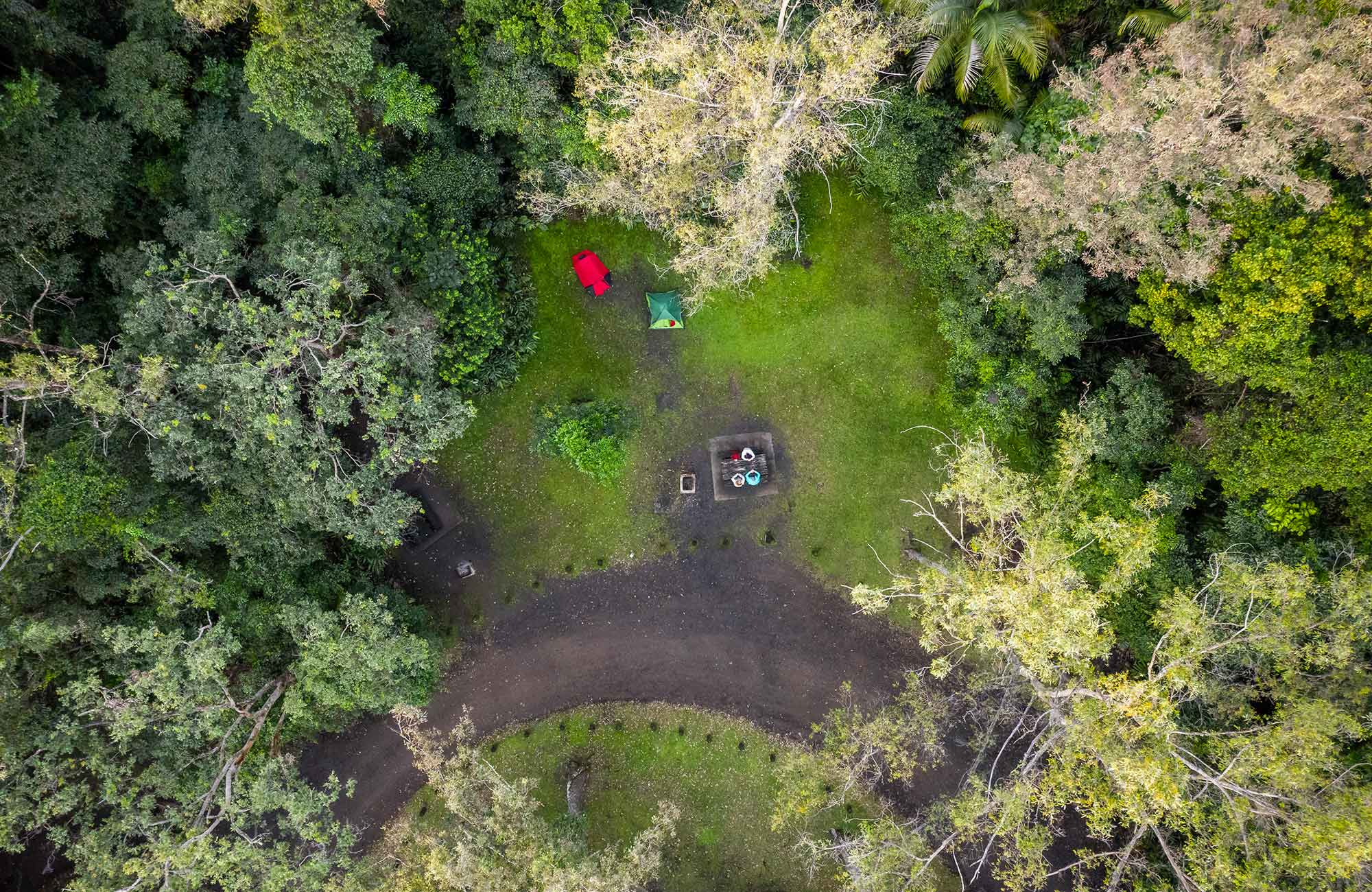 Aerial view of Sheepstation Creek campground. Photo: John Spencer/DPIE