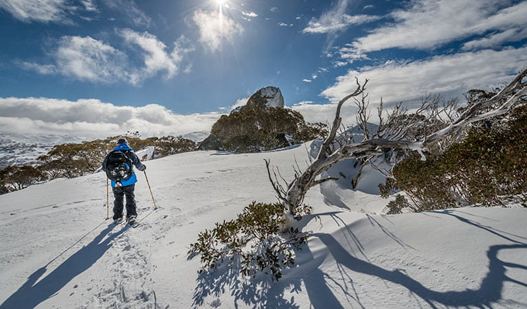 Snow skiing in Kosciuszko National ParkPhoto: John Spencer/DPIE