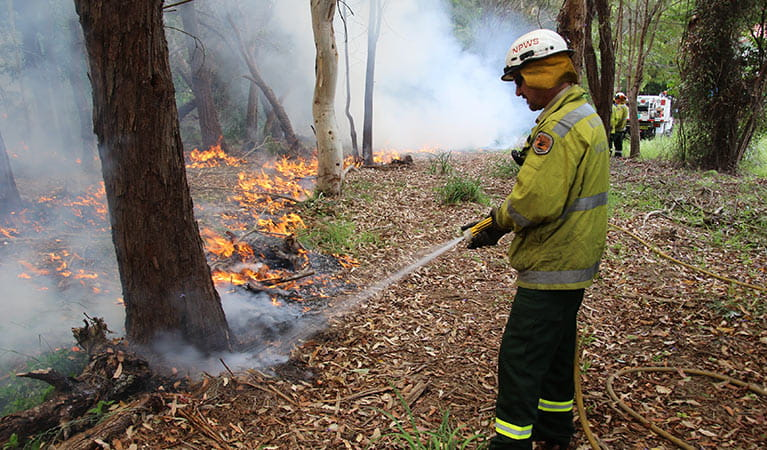 NPWS staff member conducting a controlled burn. Photo: David Croft/DPIE