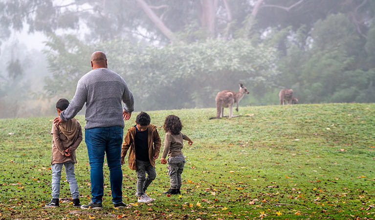 Father and children keeping a safe distance from grazing kangaroos at Cattai National Park. Photo credit: John Spencer. <HTML>&copy; DPIE