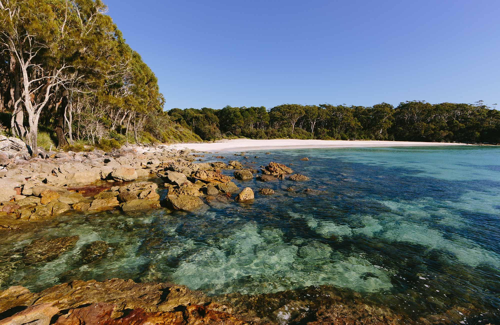 Jervis Bay National Park. Photo: David Finnegan