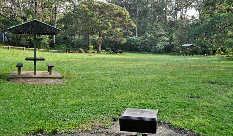 A wide grassy area with picnic table at Cottonwood Glen picnic area, Lane Cove National Park. Photo: Kevin McGrath
