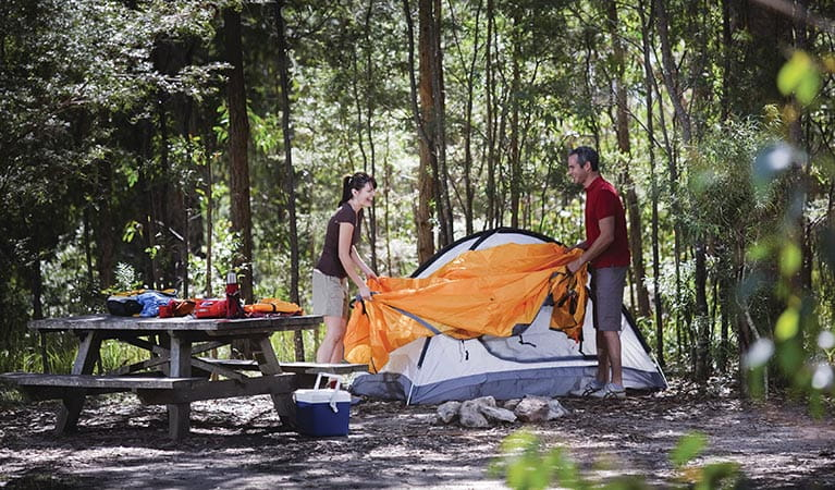 Setting a tent in Back Rock campground, Bald Rock National Park. Photo: Paul Foley
