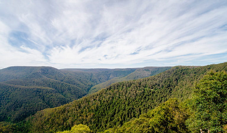 Thunderbolts lookout, Barrington Tops National Park. Photo: John Spencer
