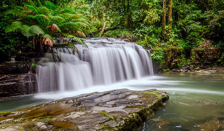 Rocky crossing, Barrington Tops National Park. Photo: John Spencer